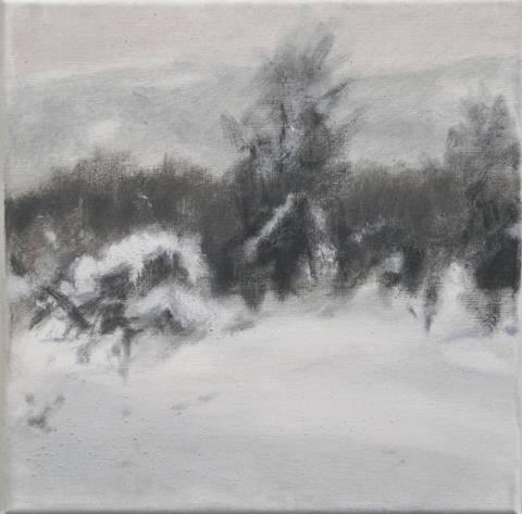 Bilde av Vinterbilde 2 av Kjetil Haug